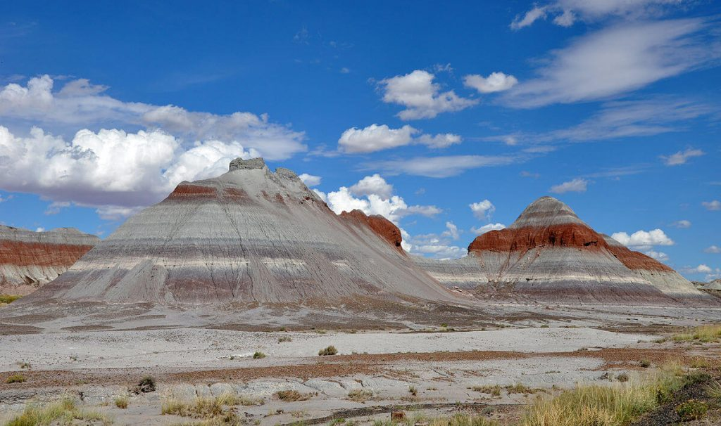 PETRIFIED FOREST NATIONAL PARK: NEAR HOLBROOK, ARIZONA